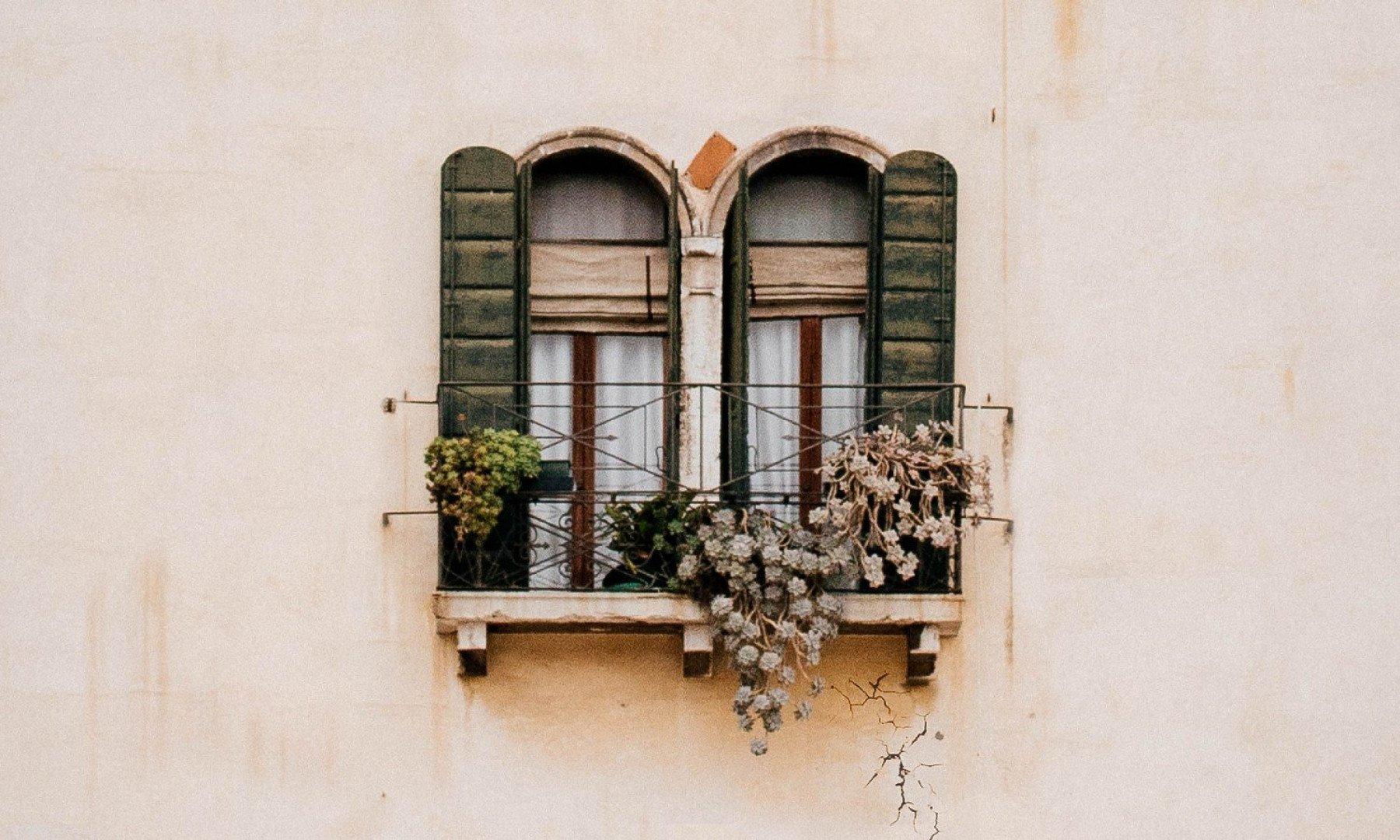 Bild på ett fönster med blommor