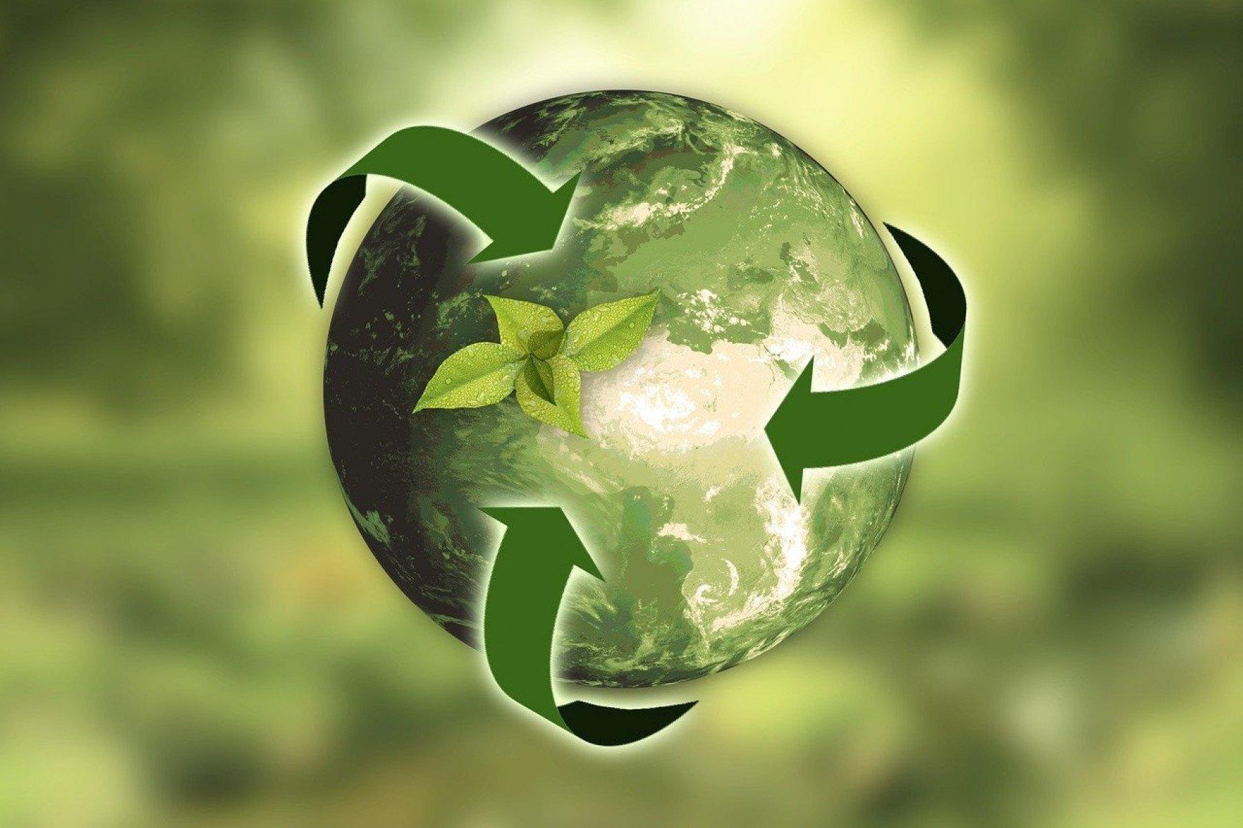 Animerad jordglob i grönt med pilar runt och växt i mitten